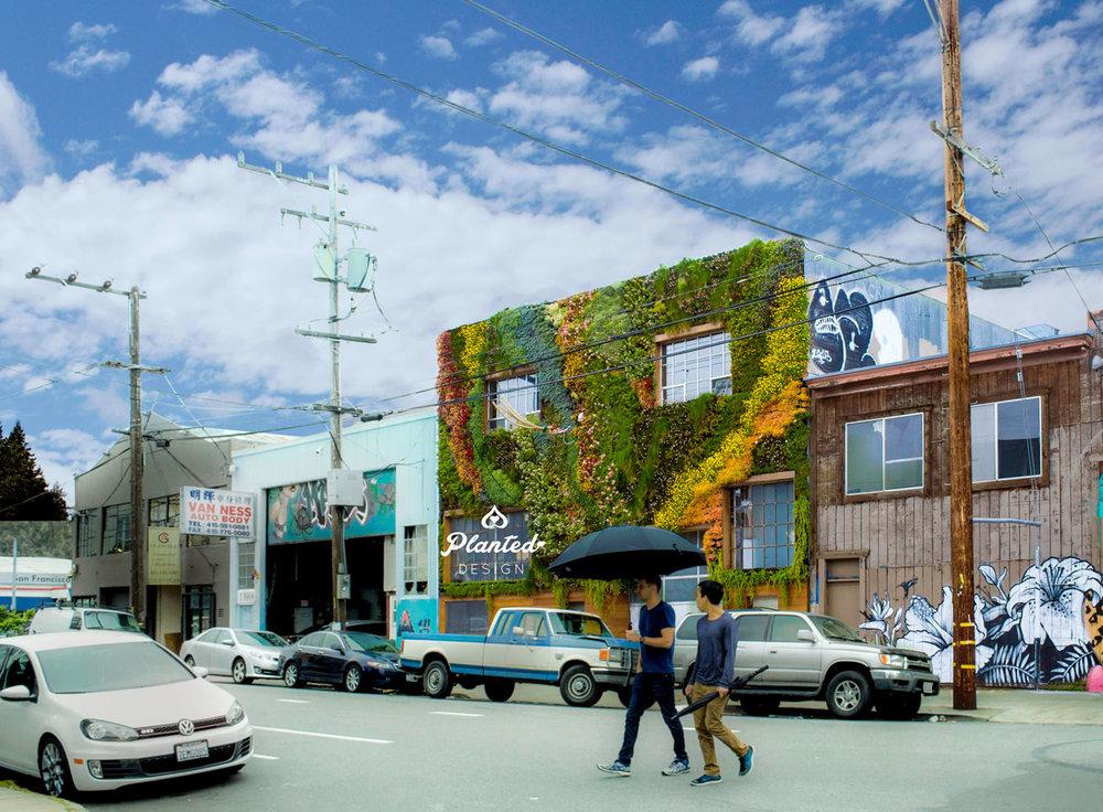 PlantedDesign-LivingWall-SF-BeSafehouse5.jpg