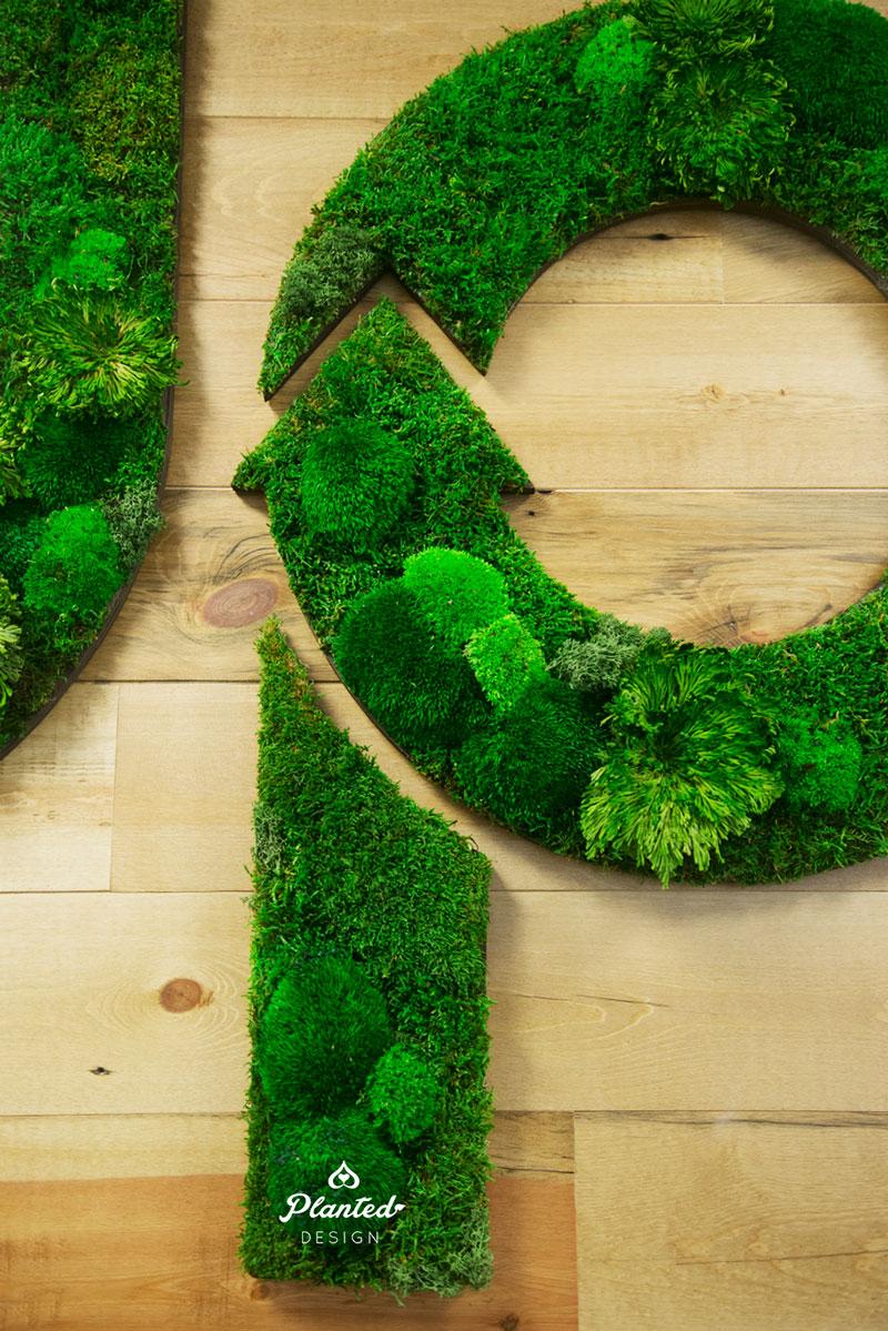 PlantedDesign-Moss-Wall-SF-CircleUp-2.jpg