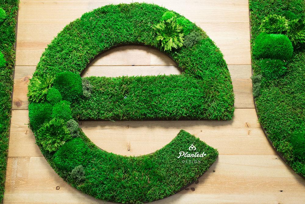 PlantedDesign-Moss-Wall-SF-CircleUp-4.jpg