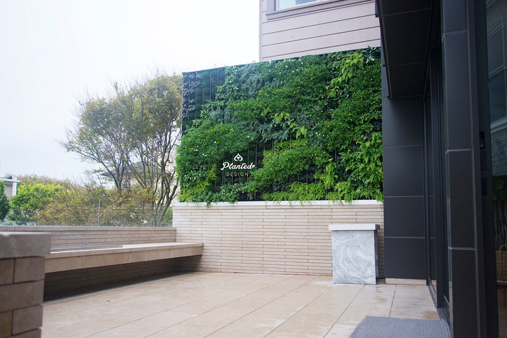 PlantedDesign-LivingWall-SF-MaryBeth13.jpg