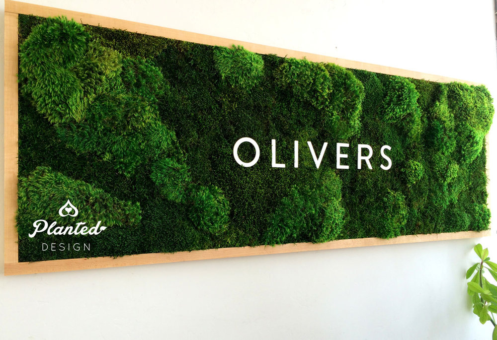 PlantedDesign-Moss-Wall-SF-Olivers-4.jpg