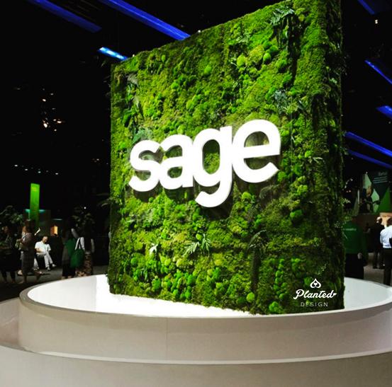 PlantedDesign-Moss-Wall-SF-Sage-9.jpg