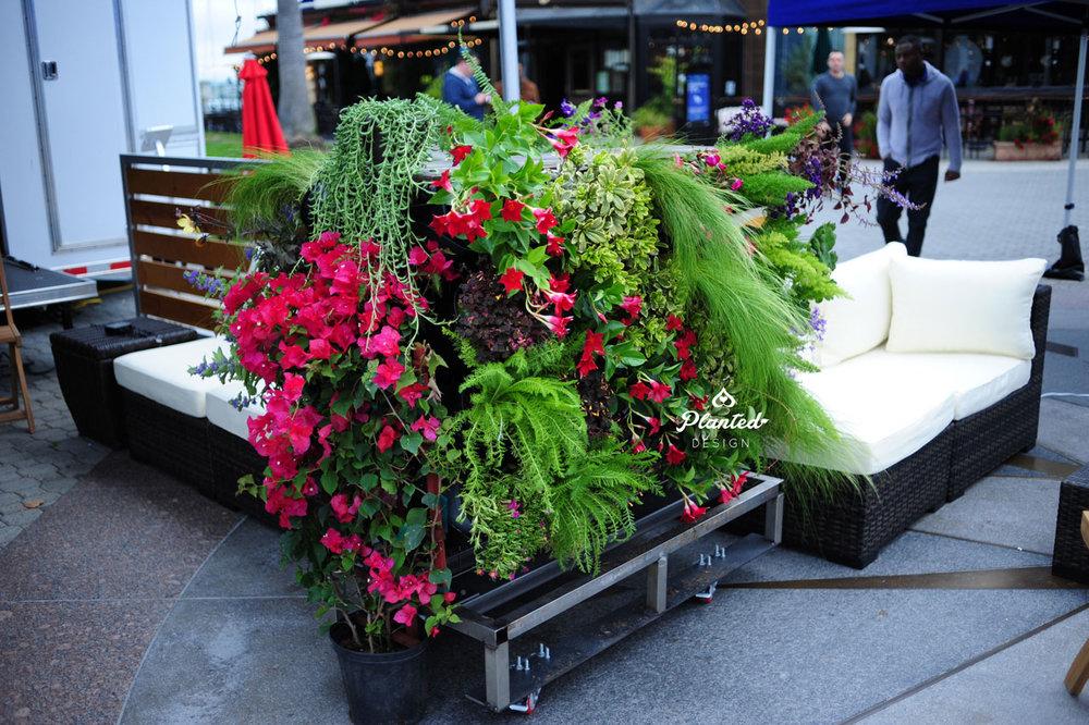 PlantedDesign-RentalLivingWall-SF-LivingSouthwest9.jpg