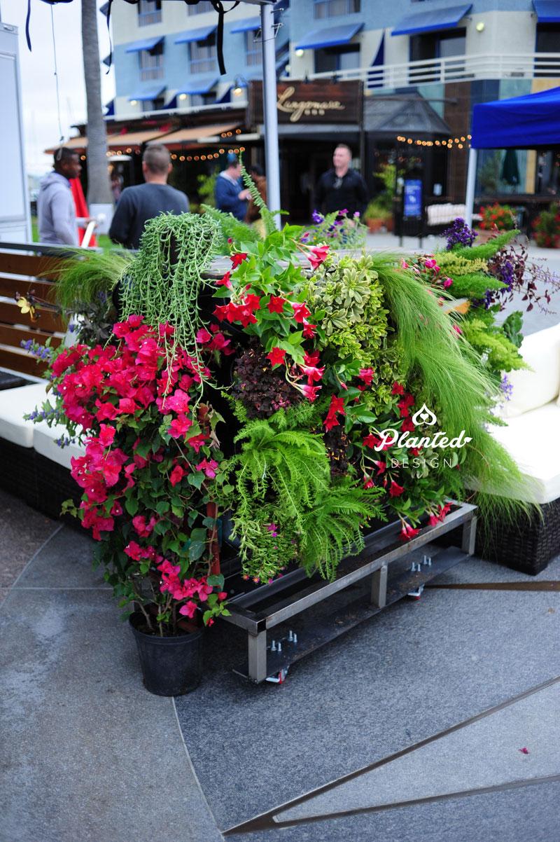 PlantedDesign-RentalLivingWall-SF-LivingSouthwest8.jpg