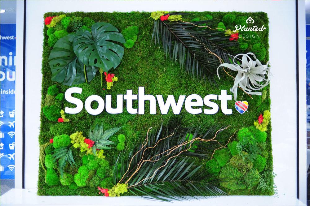 PlantedDesign-RentalMossWall-SF-MossSouthwest2.jpg