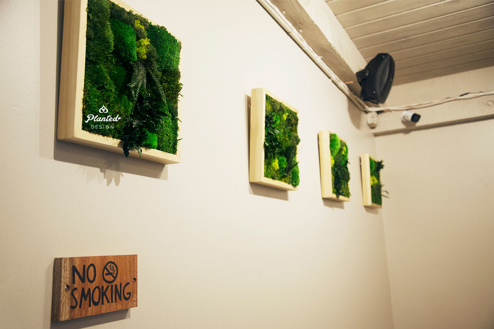 PlantedDesign-Moss-Wall-SF-Yuzu_Broffee1.jpg