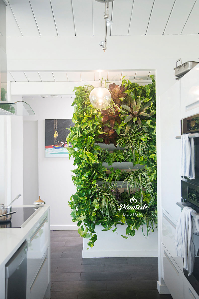Residential  - Living Vertical Herb Garden