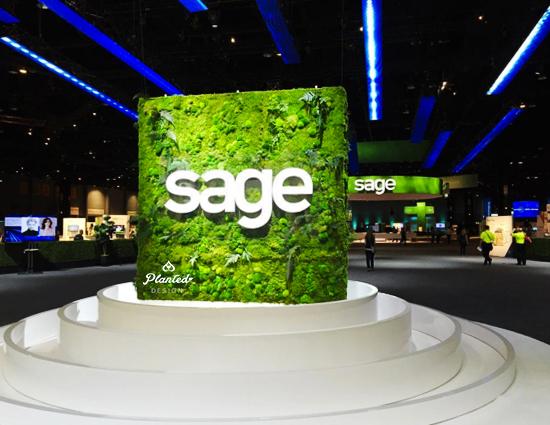 Sage / GPJ - Rental Moss Wall