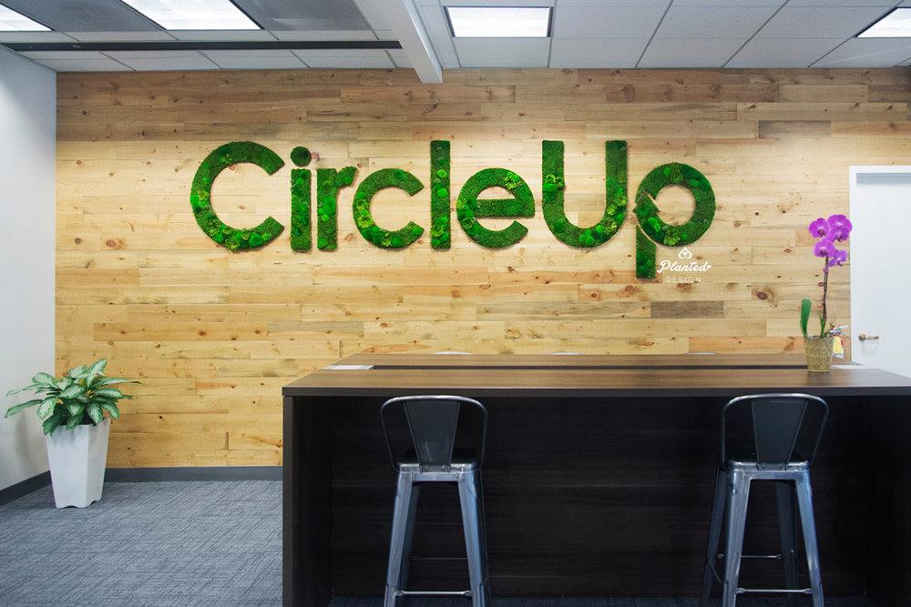 Circle Up - Moss Wall