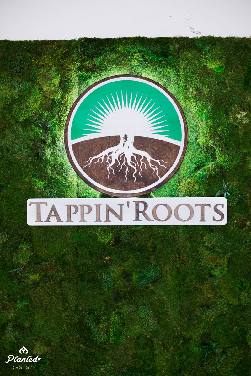 Tappin' Roots  - Moss Wall