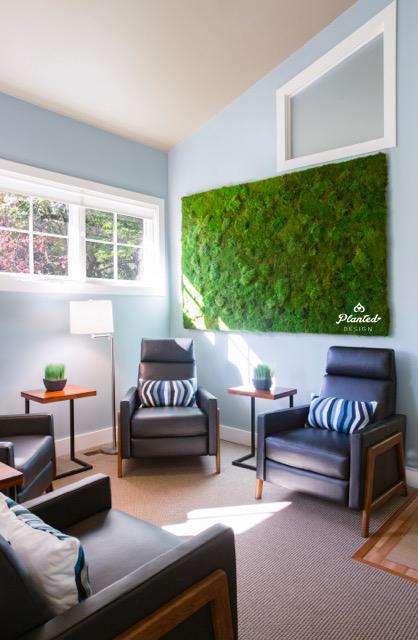 Marin Natural Medicine Clinic - Moss Wall