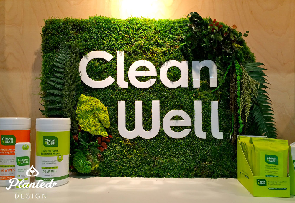Clean Well  - Moss Wall