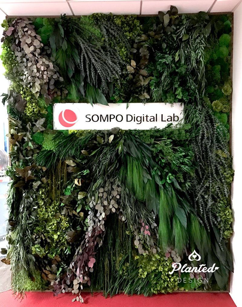 Gallery - Sompo — PLANTED DESIGN