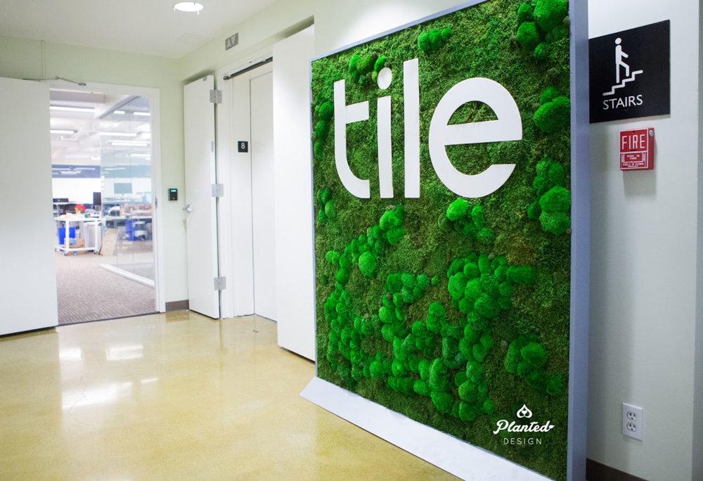 Tile - Moss Wall