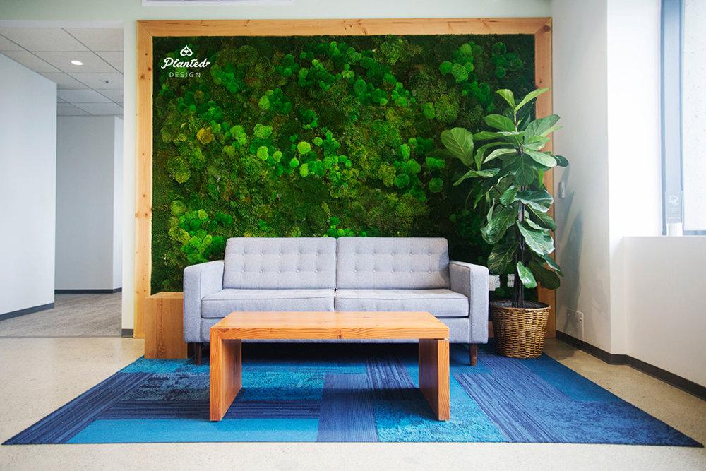 Sierra Club - Moss Wall