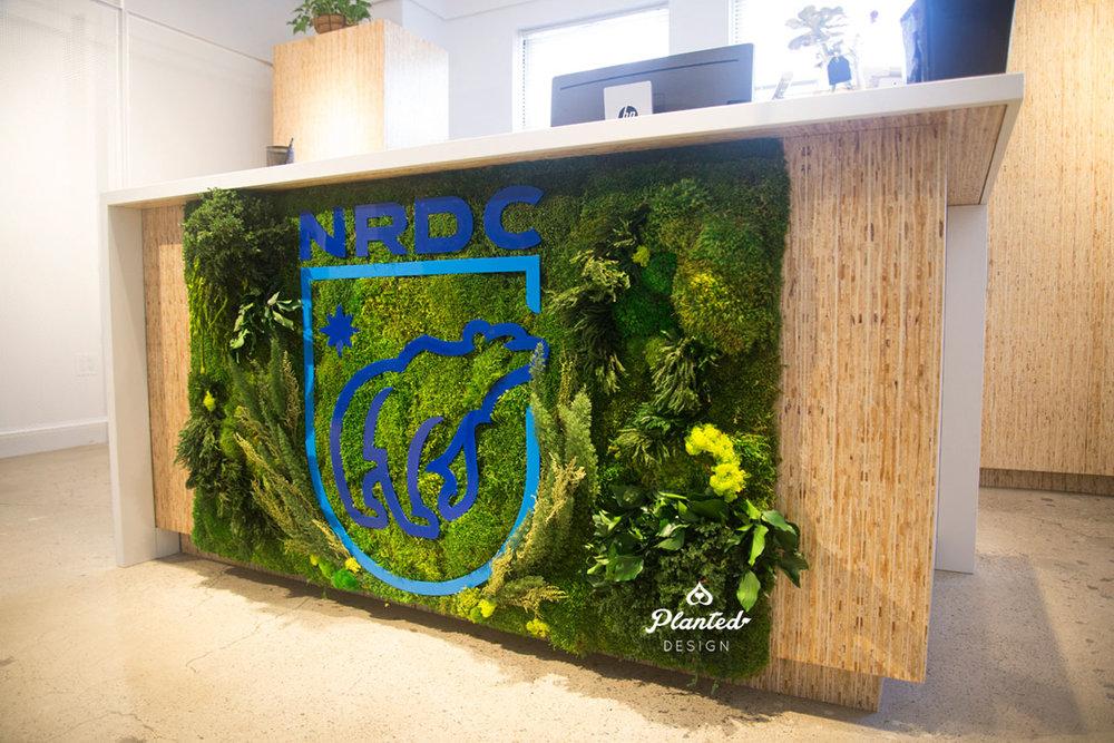 NRDC  - Moss Wall
