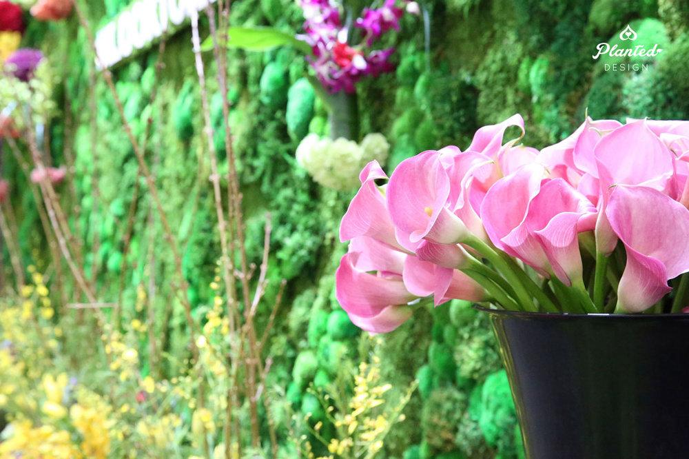 PlantedDesignMossWallRentalsPhiladelphiaFlowerShowFTLWebsite3.jpg