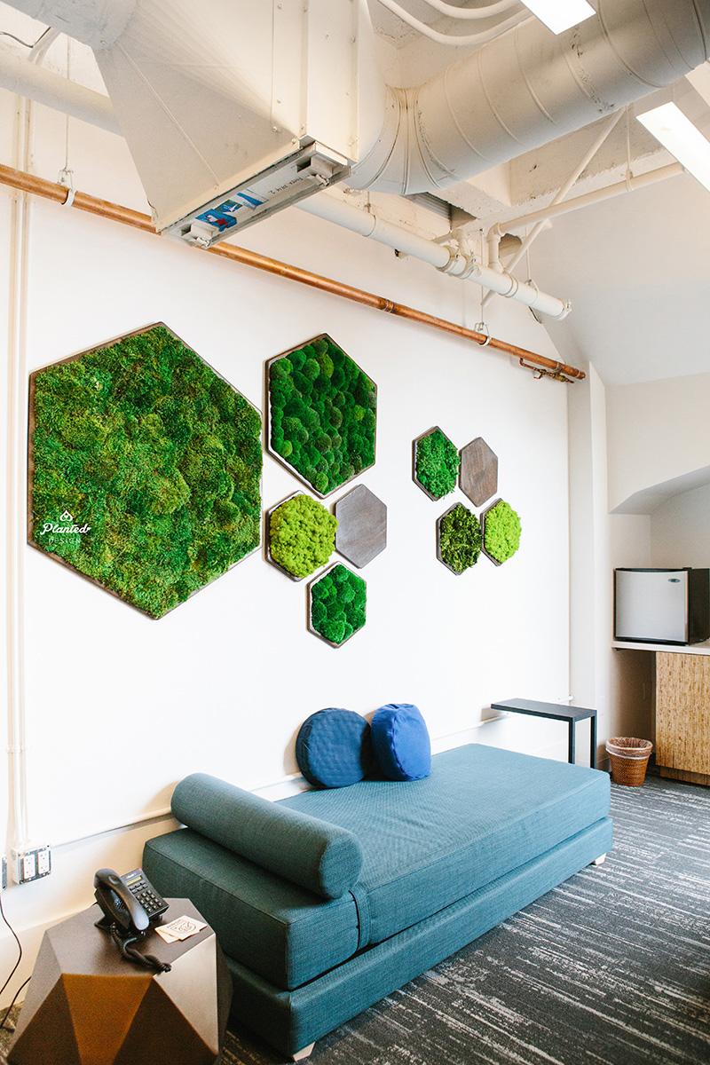 NRDC  - Hex Moss Wall
