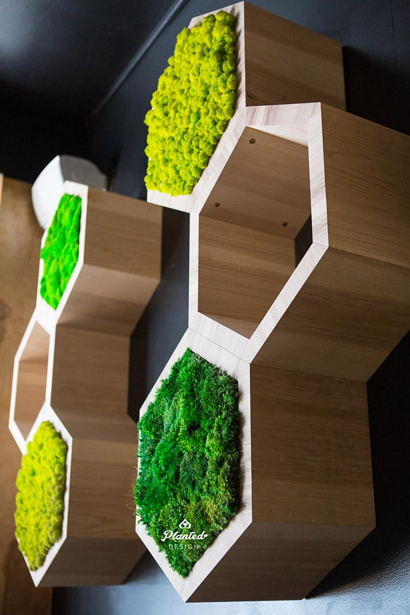 Hive  - Moss Wall
