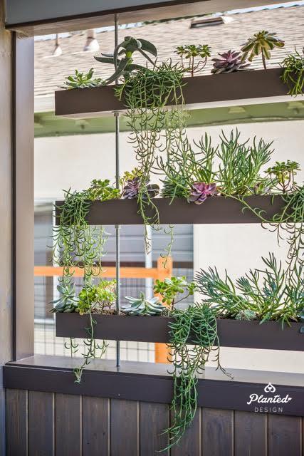 Hanging Garden -