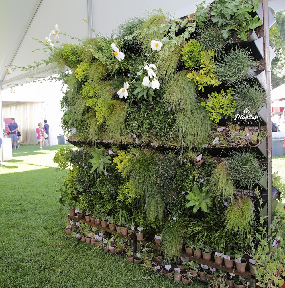 PlantedDesignRentalLivingWallEventAtStanfordUniversityPaloAlto-4,-plants,-moss-walls,-landscaping,-living-art,-ecofriendly,-environmental,-green,-sustainable,-nature,-outdoor-design,-flowers,-ferns,-grass,-succulents.jpg