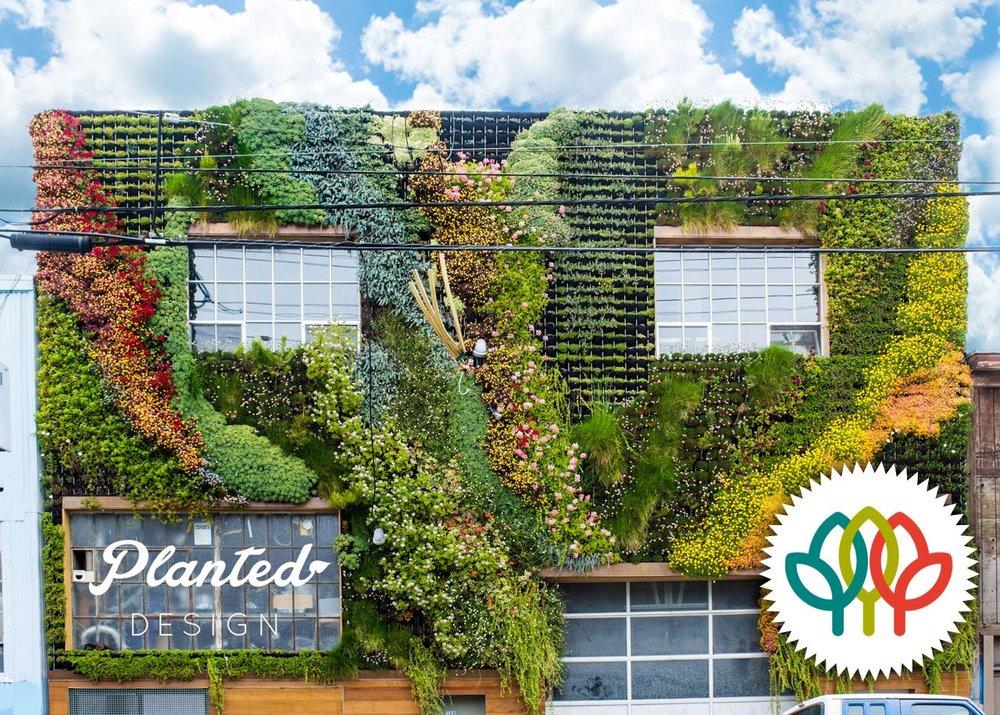 Be Safehouse  - Living Wall,American Hort Award Winner
