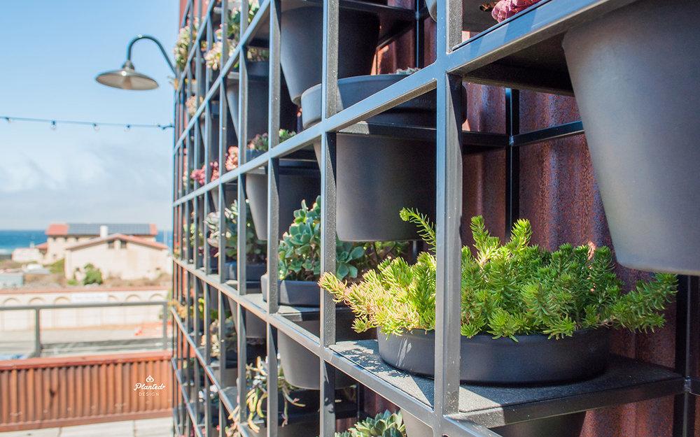 PlantedDesignLivingWallMetalModularGridRooftopResidentialSanFranciscoWeb12.jpg