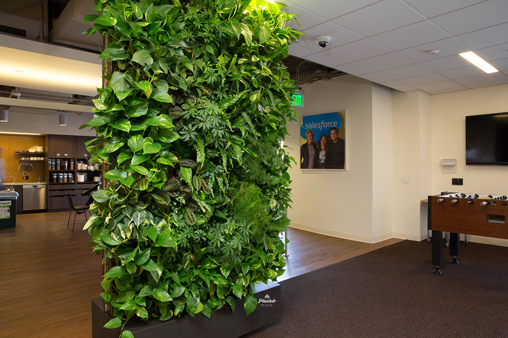 Salesforce  - Living Wall
