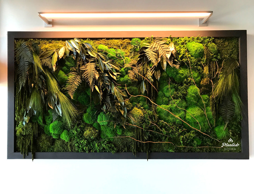 Google Access  - Moss/Living Wall
