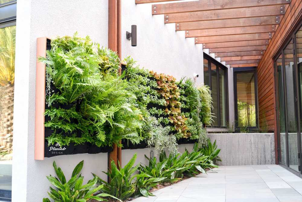 Florafelt Vertical Garden Installation by Planted Design Website 6.jpg