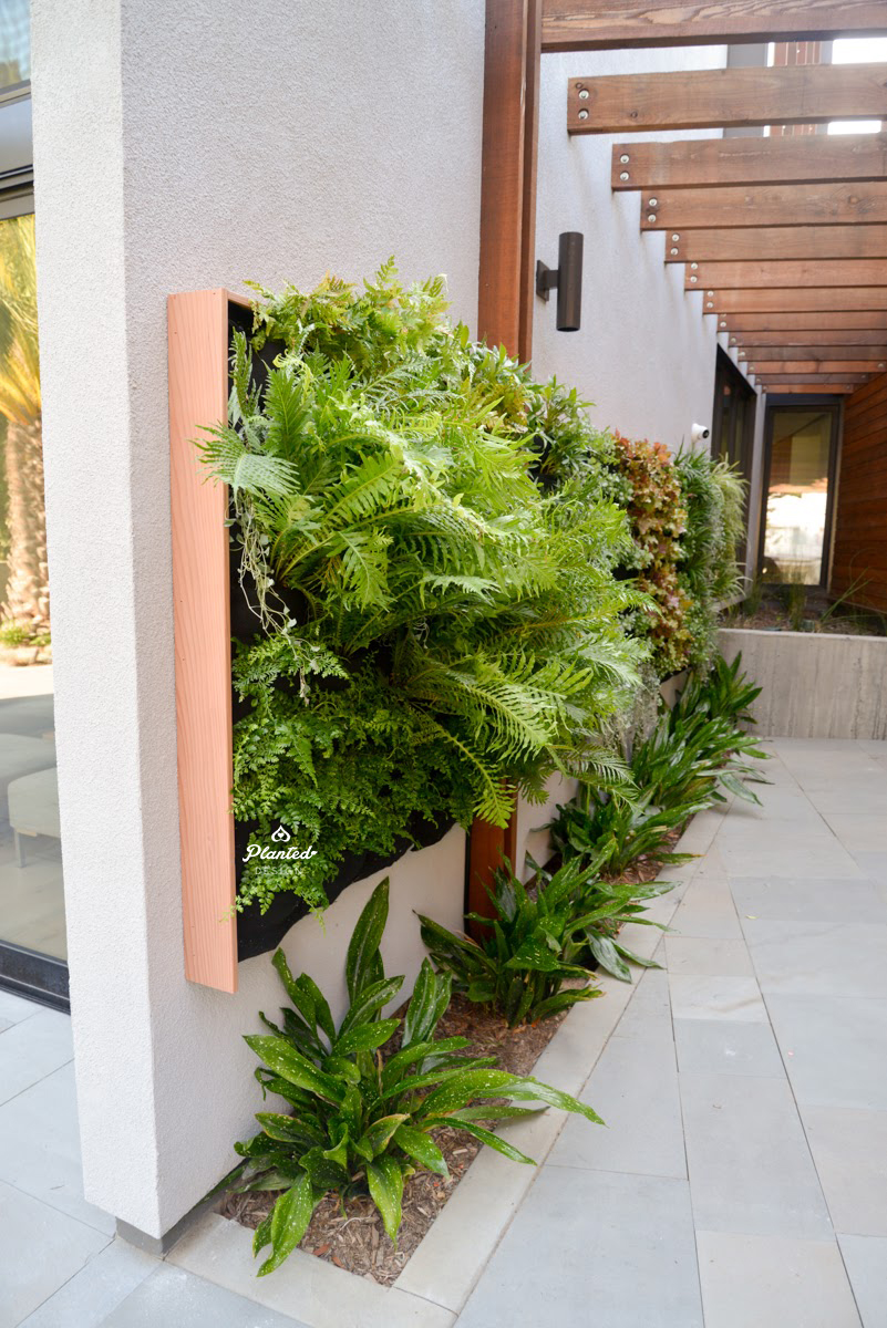 Florafelt Vertical Garden Installation by Planted Design Website 3.jpg