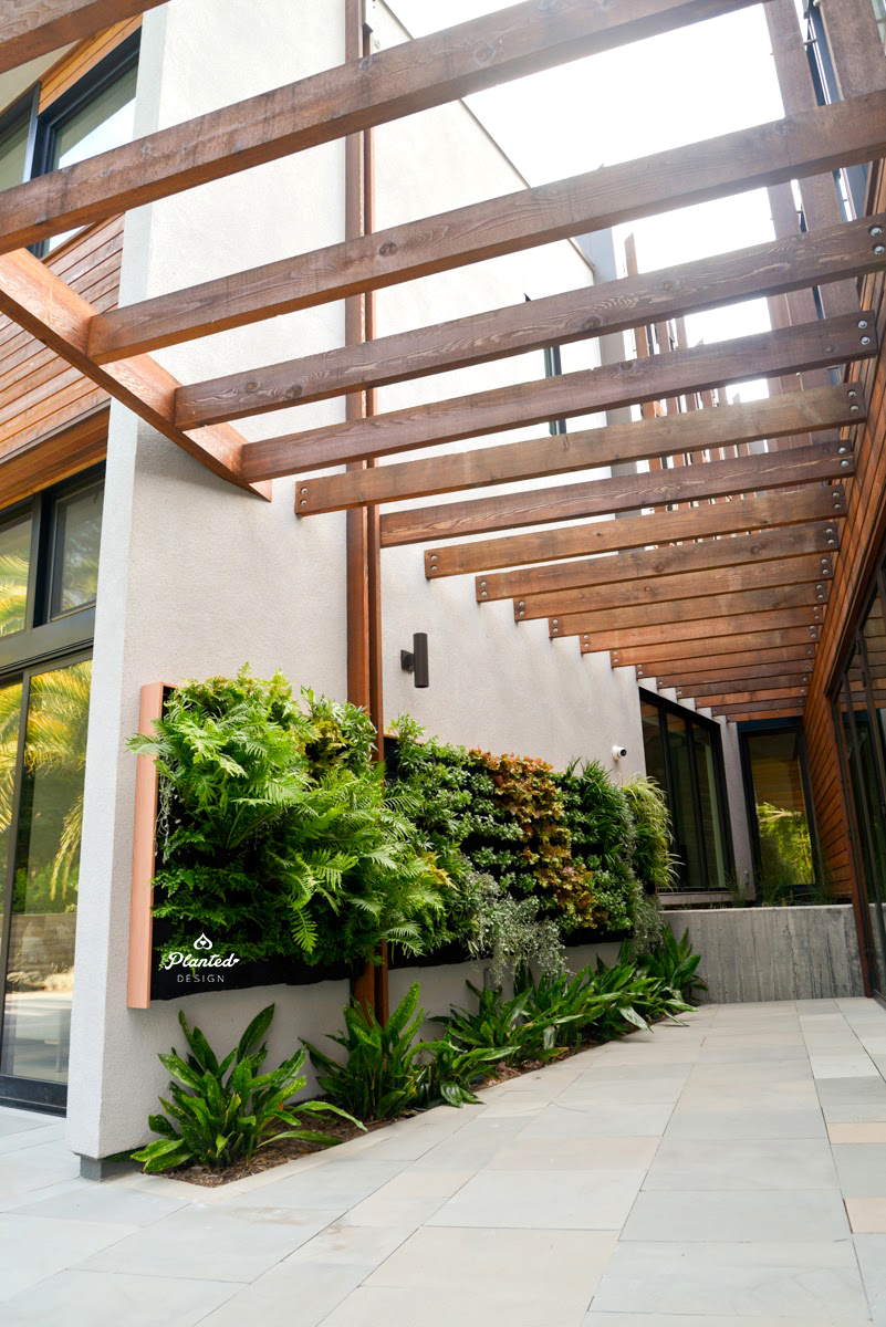 Florafelt Vertical Garden Installation by Planted Design Website 5.jpg