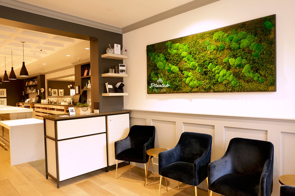 Apothecarium - Moss Wall