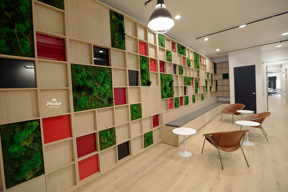 Raiz SF Office - Moss Wall