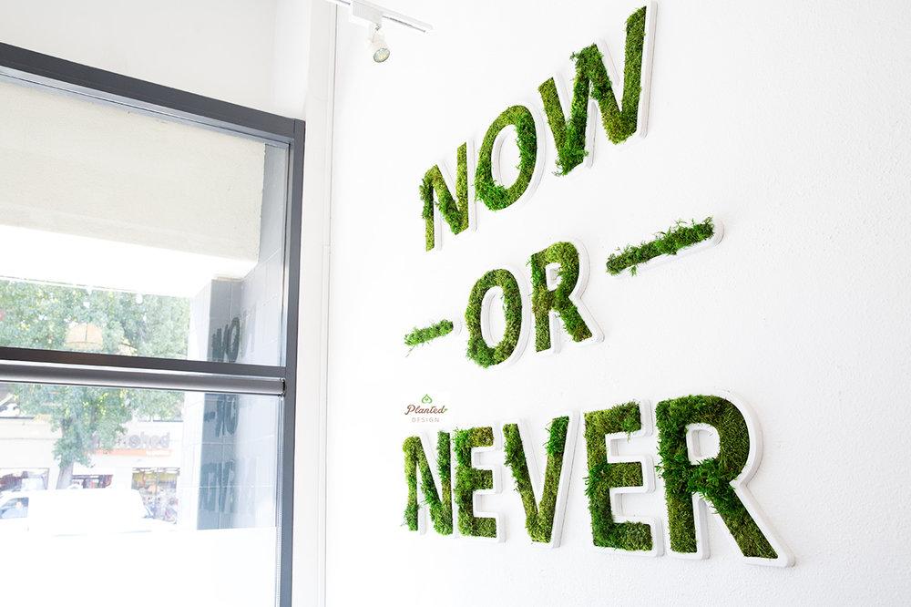 PlantedDesignNowOrNeverLogoPilatesNowCustomMossOakland3.jpg