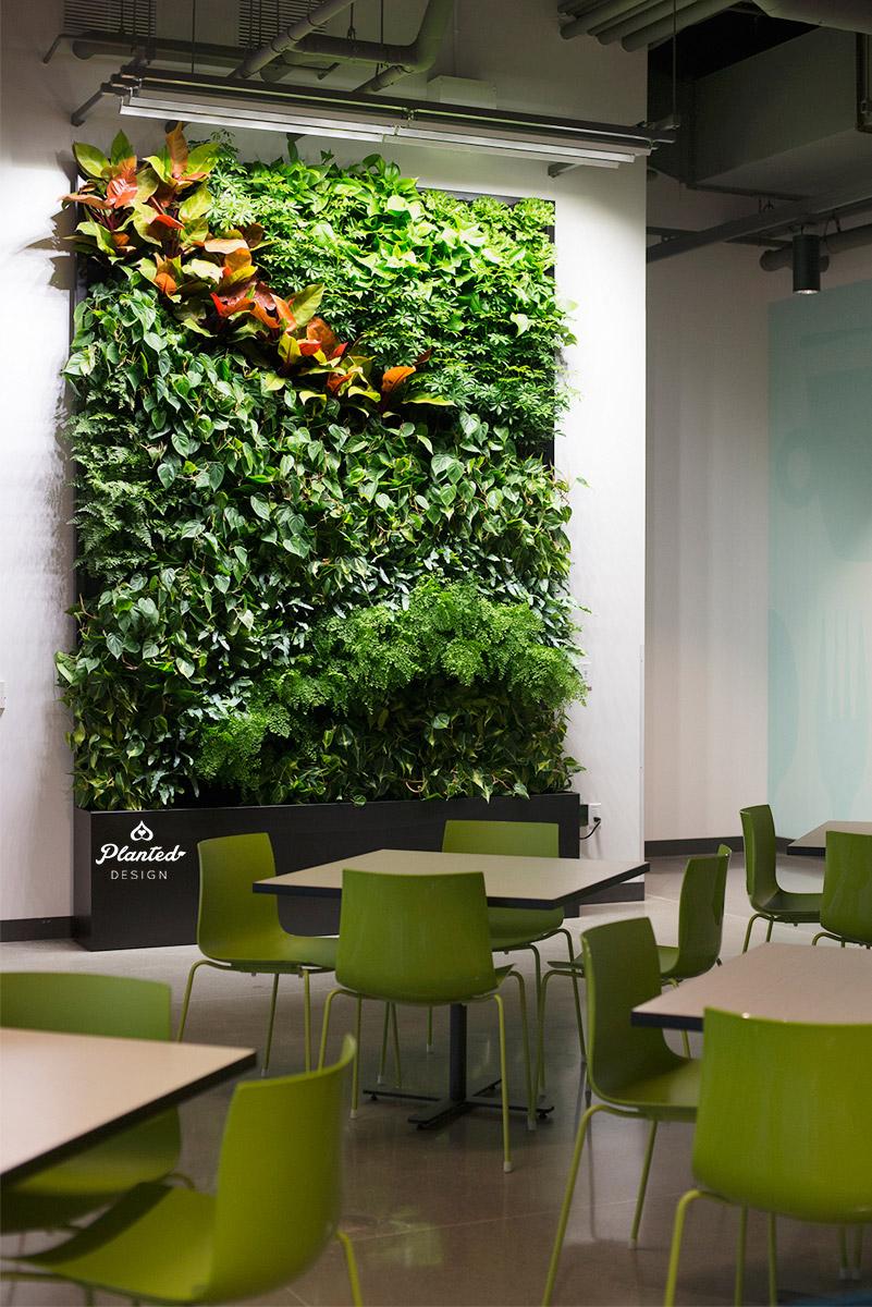 PlantedDesignGoogleAccessLivingVerticalWallRestaurantSunnyvale02_Web.jpg