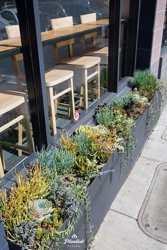 PlantedDesignGardenBedArrangementPilatesNow2.jpg