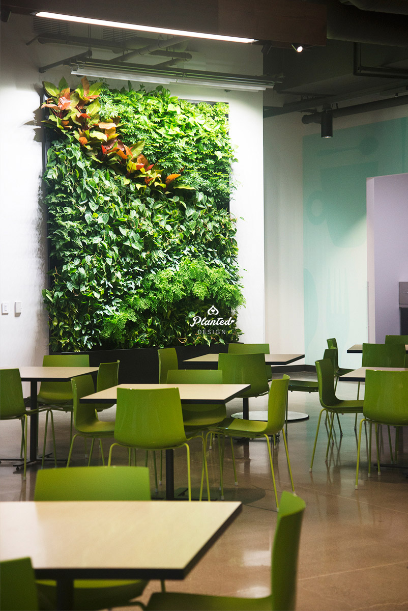 Google Access - Living Wall