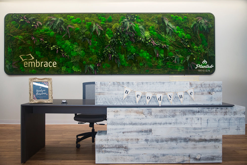 Neodyne - Reception Area Moss Wall
