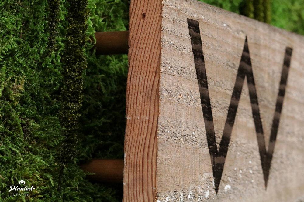 PlantedDesignAnnMarieSkinCareBerkeleyPreservedMossWallHonestWildBeautiful13Website.jpg