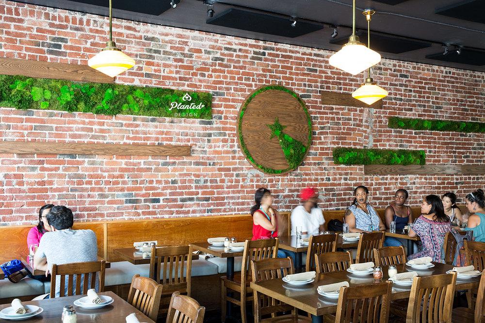 Little Star Pizza  - Moss Wall