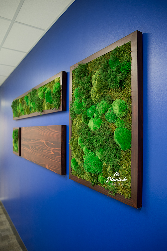 Electronic Enviroments - Moss Wall