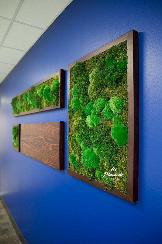 Electronic Enviroments  - Moss