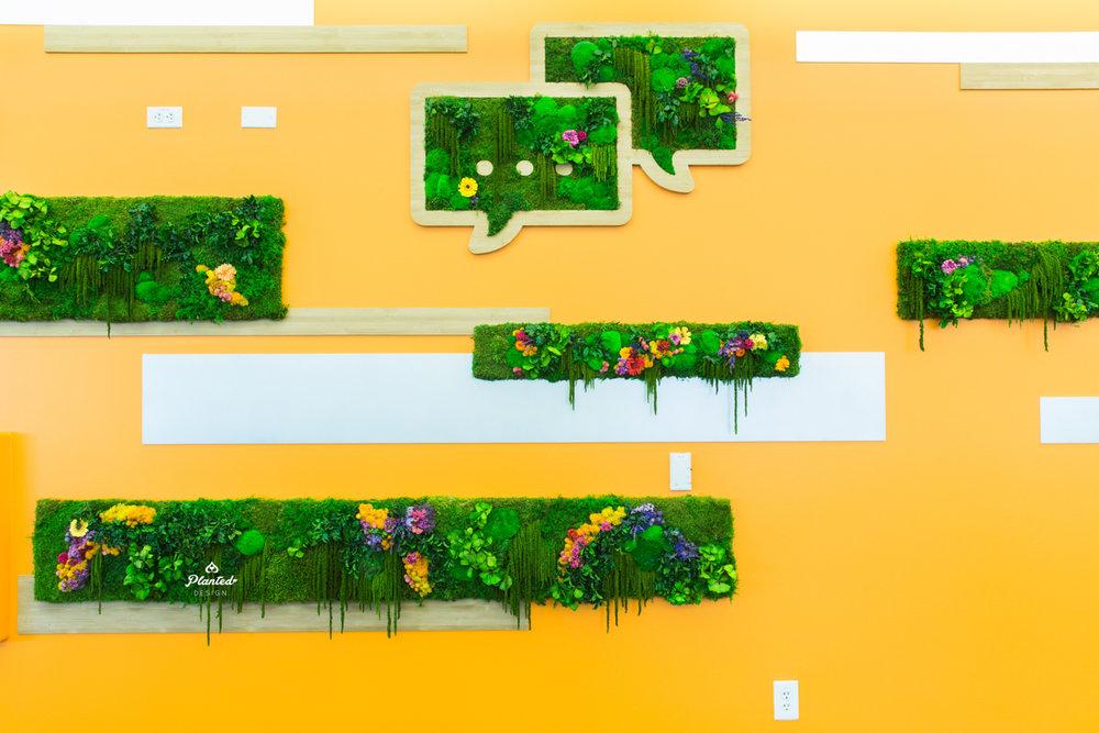 PlantedDesignMossPlantLivingWallsWithFlowersStripesAndLogos24-7_0275.jpg