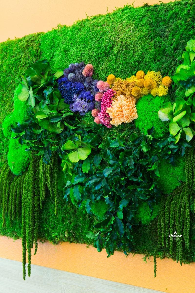 PlantedDesignMossPlantLivingWallsWithFlowersStripesAndLogos24-7_0438.jpg