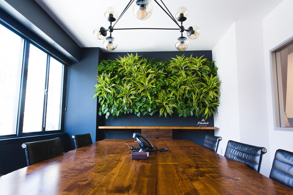 Kirschenbaum Law  - Living Wall