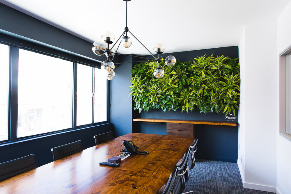 Kirschenbaum Law Living Wall