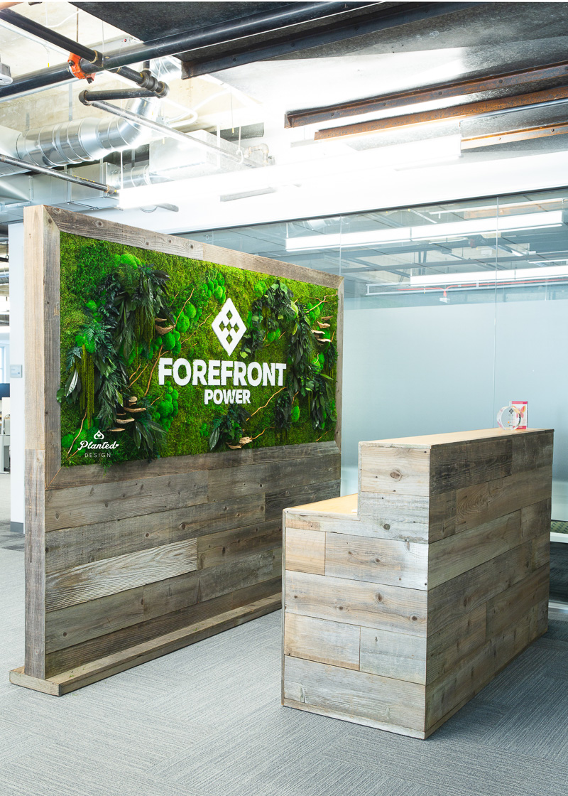PlantedDesign_FreestandingPartition_MossWall_ForeFrontPower_SanFrancisco_ReceptionDesk_Branches_Mushrooms_Amaranth_Ferns_3568.jpg