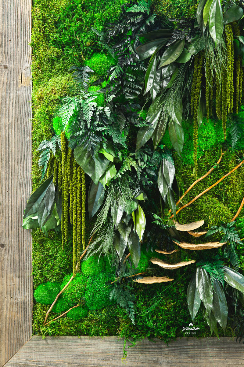 PlantedDesign_FreestandingPartition_MossWall_ForeFrontPower_SanFrancisco_ReceptionDesk_Branches_Mushrooms_Amaranth_Ferns_3574.jpg