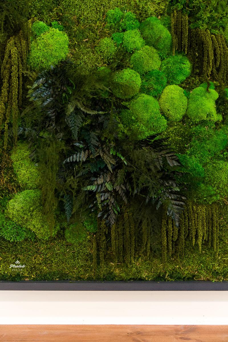 PlantedDesign_Moss_Frame_BetaBrand_Store_SanFrancisco_California_3807.jpg